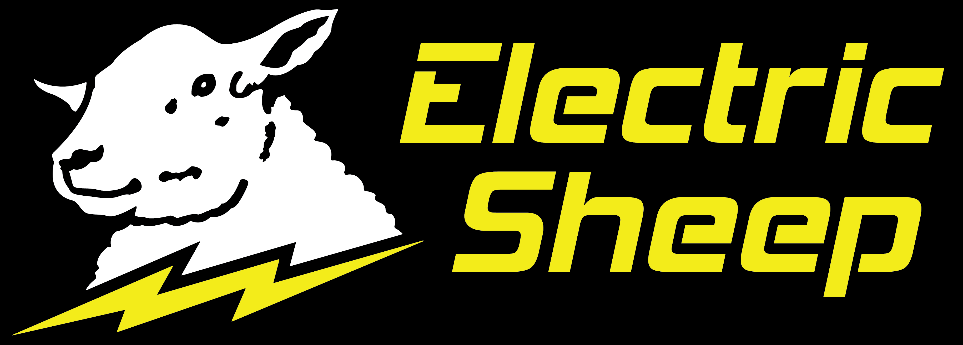 Electric Sheep Computers